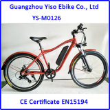 22 Inch Bike Frame Electric Mountain Bike for Sale with Removal Battery