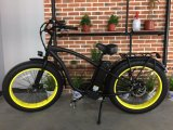 Wonderful Ride Feel Electric Bike Beach Ebike with Big Saddle