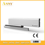 Automatic Swing Door Operator (ANNY1202)