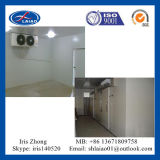 Cold Room Manufacture From Shanghai (cooling room)