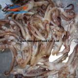 China Frozen Fish Squid Tentacle