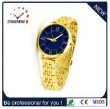 Gold S/S Watchcase, Stainless Watch, Fashion Wristwatch (DC-784)