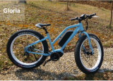 2016 Hot Sale Fat Tyre E Bikes for Ladies with MID Drive Motor