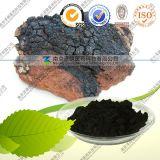 Factory Supply Natural Chaga Mushroom Extract Chaga Polysaccharide