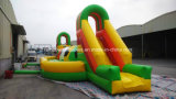 Inflatable Running Football Game Sports Games (RB9004)