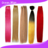 8A Grade 100% Colored Human Hair Extension