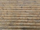 Polished Diamond Giallo Granite Countertop Bullnose Edge