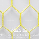 Hex Netting /Vinyl Coated Hex Netting/PVC Coated Hex Netting