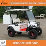 2 Seater Mini Utility Cart, Golf Cart with Rear Cargo Bed