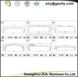 Aluminum Extrusion Motor Aduio Radiator for Construction