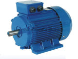 Ie2 Ie3 High Efficiency 3 Phase Induction AC Electric Motors Ye3-132s2-2-7.5kw