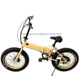 2017 New Style Folding Electric Bicycle for Kids