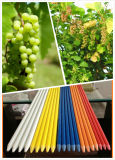 Fiberglass Plant Stakes Support Rod
