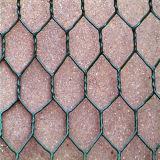 Good Quality Galvanized/PVC Coated Gabion Box Wire Mesh (Factory)