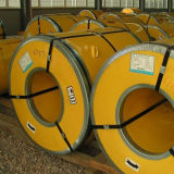 Competitive Stainless Steel Coil (ASTM 316)