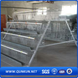 High Quality Layer Chicken Cage