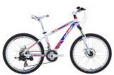 Bicycle (KSBL1071) 7