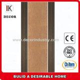 Veneer Hollow Core Plywood Doors Design