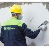 Redispersible Emulsion Powder for Plaster Mortar