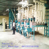 20t 30t Maize Milling Machines Cost