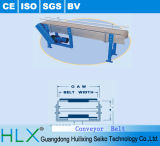 Flat-Top Chain Conveyors (MADE IN HLX)