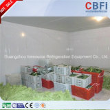 Guangzhou Mobile Cold Room for Nigeria Businessmen