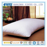 2016 New Washed Goose Feather Pillow Set/Pillow Shell/ Pillowcase