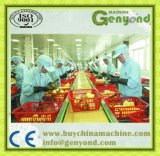 High Efficiency Candied Fruit Production Line
