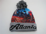 Fashion Knitted Winter Embroidery Hat Beanie