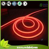 LED Neon Tube with 12V-240V/Outdoor Lighting