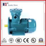 AC Asynchronous Electric Ex-Proof Motor with 380V 0.37kw
