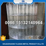 Manfuacture for Galvanized Wire Mesh Welded Mesh Fence