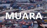 Lianyungang to Muara Logistics by Ocean FCL