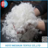 Bulk Sale High Quality White Goose Feather