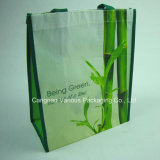 Environmental Friendly Non Woven Bag (BG1116)