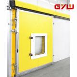 Air-Condition Cold Room Door