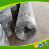 Galvanized Stainless Steel Wire Goat Fence