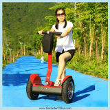 CE Approved Popular Bike Electric with Self Balance