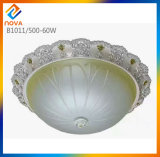 Factory Simple Style 22W LED Ceiling Lamp for Home Light