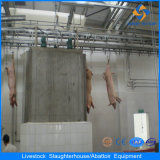 Hot New Products of 100 200 Pig Slaughter House