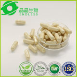 Lower Blood Fat and Sugar Powder Capsule Ginseng Extract
