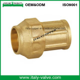 Top Quality Brass Forging Compression End Female Socket (IC-7002)