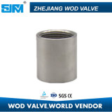 Coupling for Pipe Fittings Stainless Steel with Good Quality Best Price