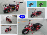 Professional Gas Powered Mini Bike with Good Price