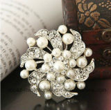 Brooch Wholesale Fashion Joker Diamond Rhinestone and Pearl Brooch (Brooch TP11)