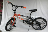 Free Style Children Bicycle (SR-A130)