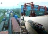 Consolidate Shipping Service From Qingdao, Tianjin, Ningbo, Shanghai, Fuzhou, Guangzhou, Shenzhen Port in China