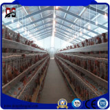 Durable Steel Structure Poultry Farm Shed for Chiken Hen Farm