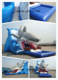 Big Shark Attack Inflatable Slides with Pool
