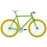 Hi-Tensile Steel Frame Single Speed Fix Gear Bike